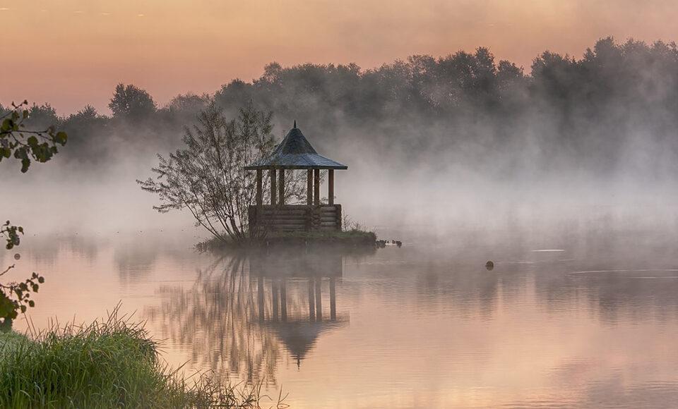 Fog to fresh water